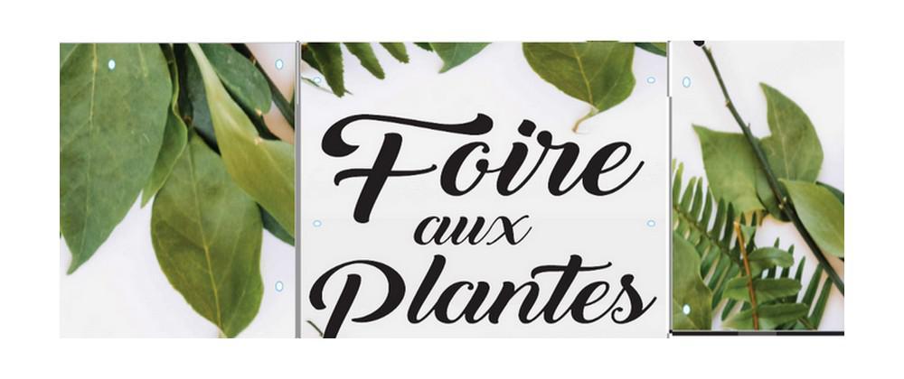 foire-aux-plantes-2018