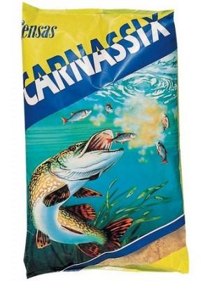 Carnassix
