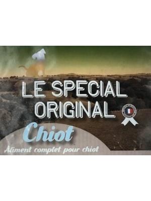 Spécial Original Chiot