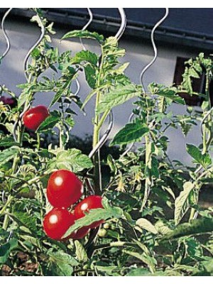 Les tuteurs la d coration d 39 ext rieur jardin - Tuteur tomate spirale leclerc ...