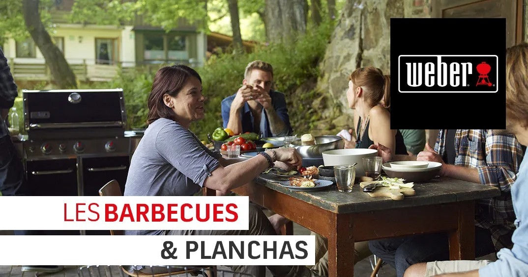 DRIVE BARBECUES & PLANCHAS