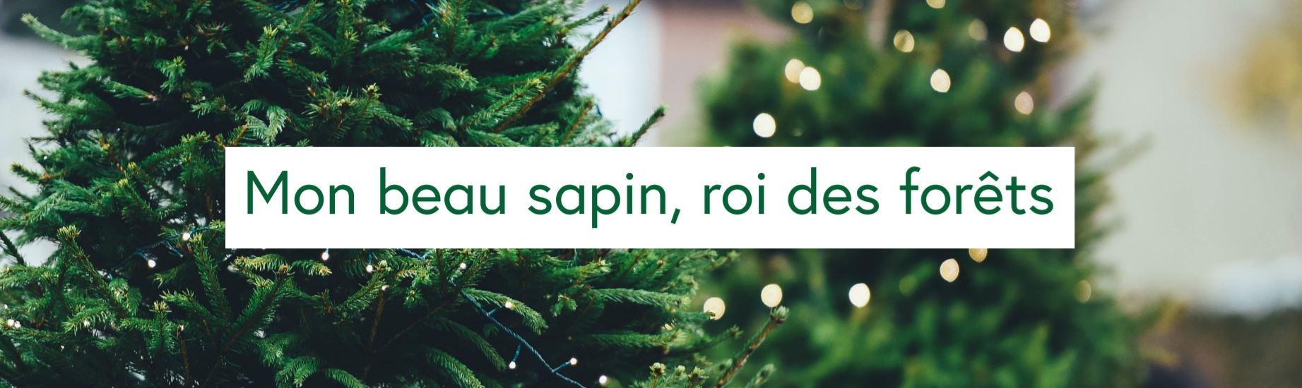 Sapins et décors de Noël