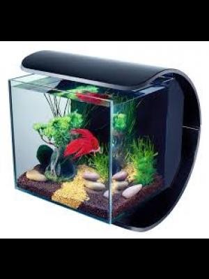 Aquarium tétra silhouette led