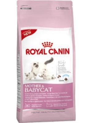 BABY CAT S0111944