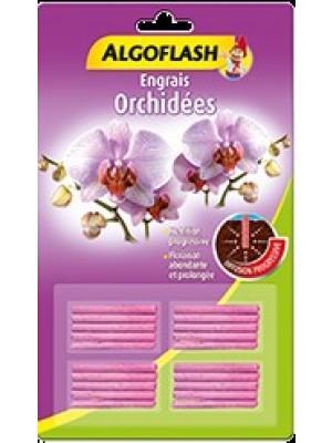 Bâtonnets orchidées