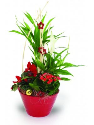"""Composition florale """"Céramique Compiègne"""""""