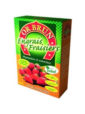 ENGRAIS FRAISIERS 800GR OR BRUN