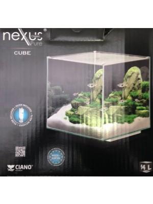 Aqua Nexus 15