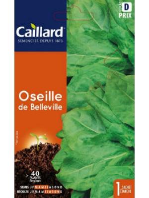 OSEILLE DE BELLEVILLE
