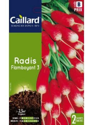 RADIS FLAMBOYANT 3 SACHET CAILLARD